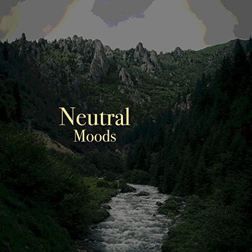 Sleep Ambience & Nature and Rain