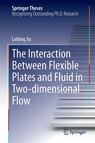 The Interaction Between Flexible Plates and Fluid in Two-dimensional Flow (Springer Theses) (English Edition)