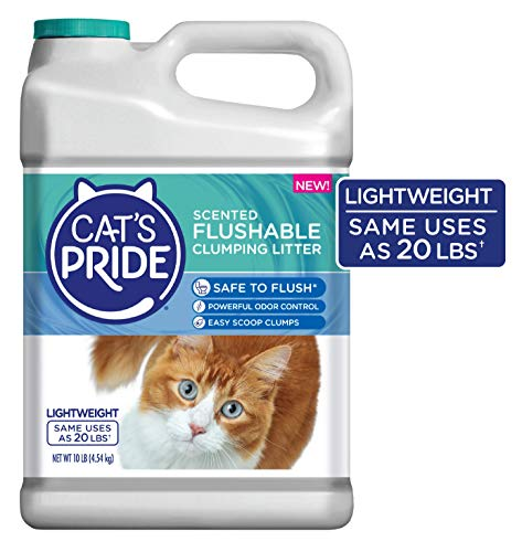 Cat's Pride Lightweight Flushable Scented Clumping Clay Cat Litter, 10-lb...