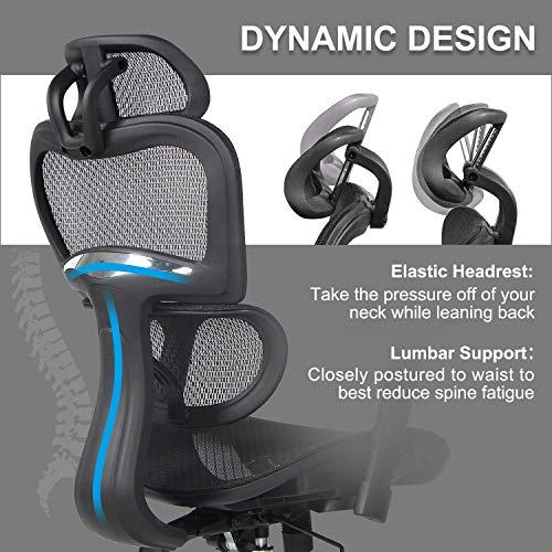 Rimiking Mesh Ergonomic Home Office Desk Chair High Back with Adjustable Headrest and Armrests, Black
