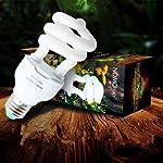13W Globe Spirale Lampe Calcium UV UVB Ampoule pour Tortue Lézard Reptile - UVB 5.0 #3