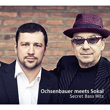 Secret Bass Hits (feat. Harry Sokal)