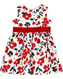 Carter's Baby Girls' Full Skirt Party Dress (Red Floral, 24 Months)