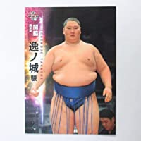 BBM2015大相撲カード【レギュラーカード】No.08逸ノ城駿/関脇