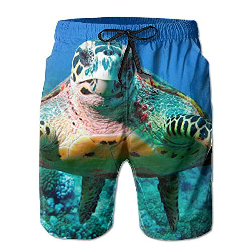 GOSMAO Bañadores para Hombre Ocean Sea Turtles Classic Summer Shorts Shorts de baño Casuales con Bolsillos para Hombres