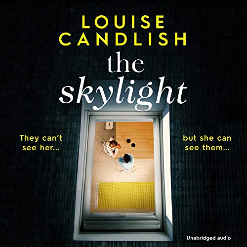 The Skylight cover art