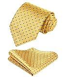 HISDERN Herren Krawatte Taschentuch Check Krawatte & Einstecktuch Set Gelb & Lila