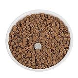LIUKLAI Japón importó Suelo de Jade Rojo Suelo suculento de 6-11 mm