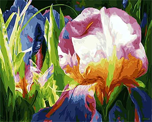 baodanla Frameloze olieverfschilderij Ng by Nummers Flower digitaal olieschilderij op doek Ng Home Decor for Living Roo