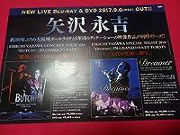 ミニポスターCF2 矢沢永吉/EIKICHI YAZAWA CONCERT TOUR 2016 「BUTCH」 EIKICHI YAZAWA SPECIAL NIGHT 2016「Dreamer」 非売品
