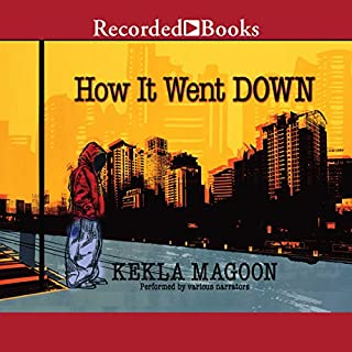 How It Went Down audiobook cover art