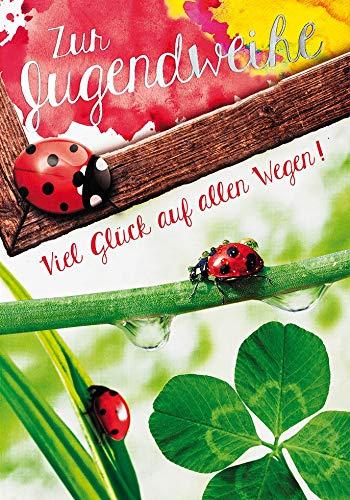 Karte zur Jugendweihe Basic Classic - Marienkäfer - 11,6 x 16,6 cm