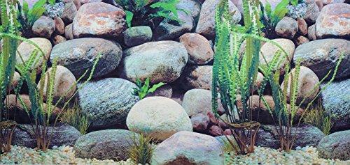 Pistachio pet - Poster double-face con sfondo per acquario, 45 x 100 cm