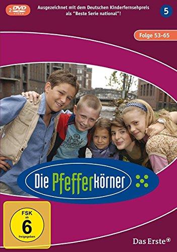 Staffel 5 (2 DVDs)