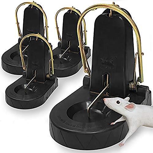 Kat Sense XXL Rat Trap Subway Series
