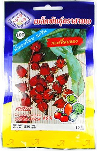 ローゼル Roselle タネ 種子 タイの野菜 10g 約230粒 CHUA YONG SENG