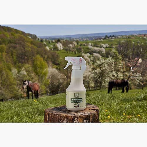 Relax Lebermoosspray mit Niem für Pferde 500ml