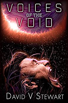 Voices of the Void by [David V. Stewart]