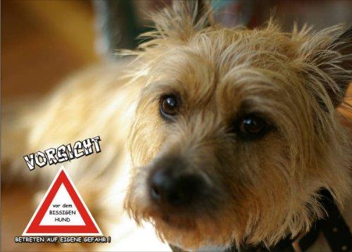INDIGOS UG - Türschild FunSchild - SE689 DIN A4 ACHTUNG Hund Skye Terrier - für Käfig, Zwinger, Haustier, Tür, Tier, Aquarium - aus hochwertigem Alu-Dibond beschriftet sehr stabil