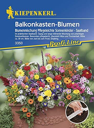 Kiepenkerl 3350 Balkonkasten-Blumen Blumenmischung Pflegeleichte Sonnenkinder (Saatband) (Blumenmischungsamen)