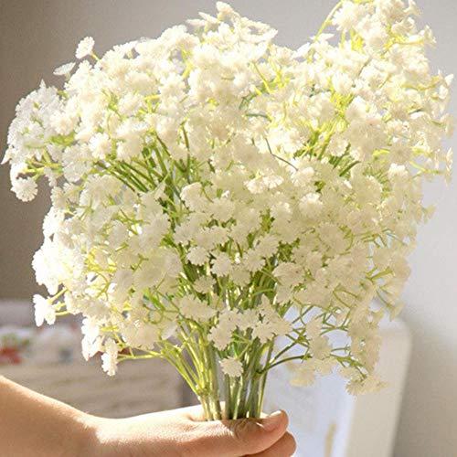 ASTONISH I semi della confezione: Bianco: Semi Breath 30X il bambino di Gypsophila elegans fiore da taglio Hardy perenne Combsh Fas