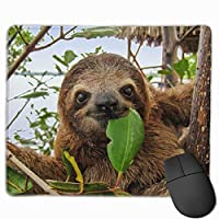 マウスパッド かわいい面白い赤ちゃん茶色つま先ナマケモノ ゲーミングマウスパット 最適 高級感 おしゃれ 防水 耐久性が良い 滑り止めゴム底 ゲーミングなど適用 マウスの精密度を上がる( 25*30 Cm )