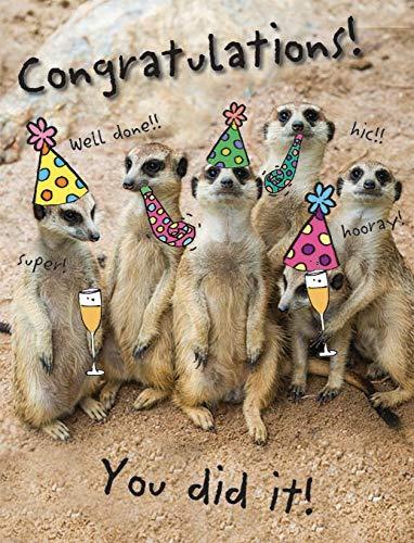 Piccadilly Greetings - Tarjeta de felicitación para ocasión humorística (20,3 x 15,2 cm)
