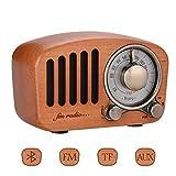 Qoosea Retro Radio Portable Radio FM Radio with Bluetooth Speaker...