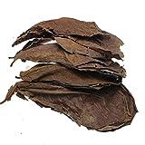 BAN SHUI JU MINSU GUANLI 50/100/200 Uds Filtro De Acuario Natural Deja Equipo De Limpieza En Filtro De Pecera Kit Acuario (Color : Leaves, Size : 100PCS)