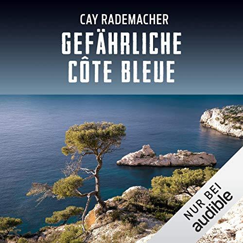 Gefährliche Côte Bleue. Ein Provence-Krimi: Capitaine Roger Blanc 4