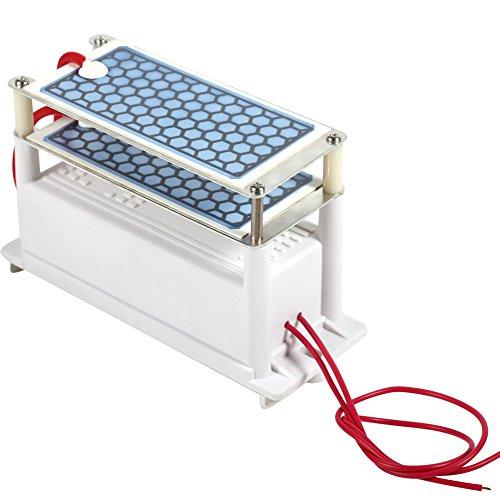 Haofy Generador de ozono Integrado, generador de ozono portátil Máquinas de ozonizador de Aire con Placa de cerámica integrada Doble AC220V 10G