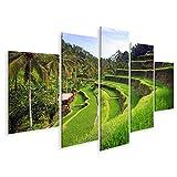Bild Bilder auf Leinwand Terrassenreisfelder in Tegallalang