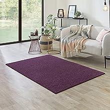 Carpet Studio Ohio Alfombra Salón 115x170cm, Alfombras para Sala, Comedór & Dormitorio, Fácil de Limpiar, Superficie Suave, Pelo Corto - Berenjena/Violeta
