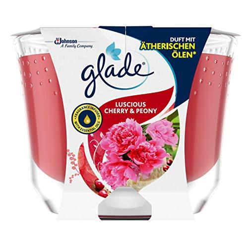 Glade (Brise) Candela profumata a lunga durata in barattolo di vetro, ciliegia & Peony, fino a 39 ore, 1 confezione (1 x 224 g)