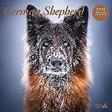 Magnet & Steel Shepherd Deluxe Kalender 2021