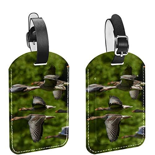 ATOMO Bolsa de equipaje de cuero Etiquetas bandada de pájaros