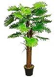 Palmier Tallipot Rônier Plante Arbre Artificielle Artificiel Plastique 180cm Decovego