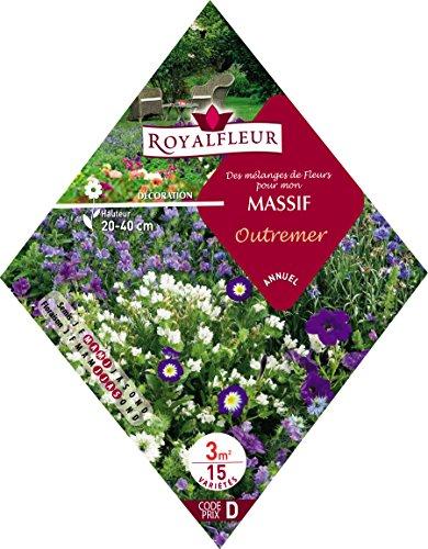 Royalfleur PFRK08711 Graines de Mélange de Fleur pour mon Massif Outremer 3 m²