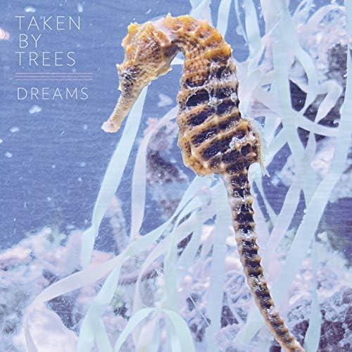 Taken By Trees