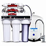 LiquaGen - 6 Stage Anti-oxidant Alkaline, ORP Ionizer Reverse Osmosis Under Sink Home Drinking Water Filtration System