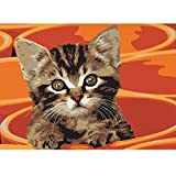 Nueva pintura por números para adultos Niños - Lindo gatito - Pintura digital de bricolaje por Kits de números sobre lienz