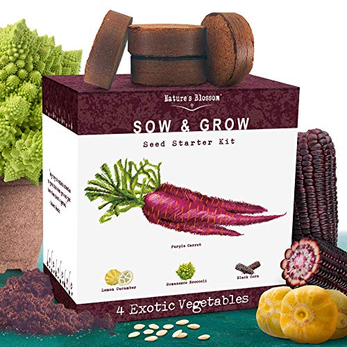 Nature's Blossom Exotic Vegetables Growing Kit. 4 Unique Plants To Grow From Seed. Beginner Gardeners Starter Set To Start Your Own Unusual Home Veg Garden. Gardening Project