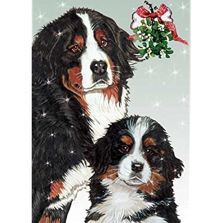 Bernese Mountain Dog Traditional Animal Personalized Christmas Card