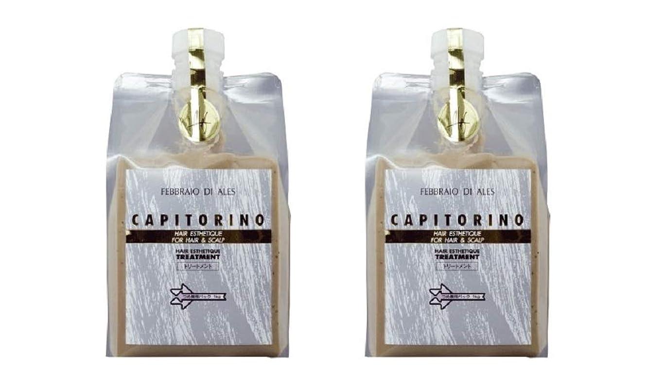 キャンドル擬人化穴【2個セット】カピトリーノ トリートメント 1000g レフィル