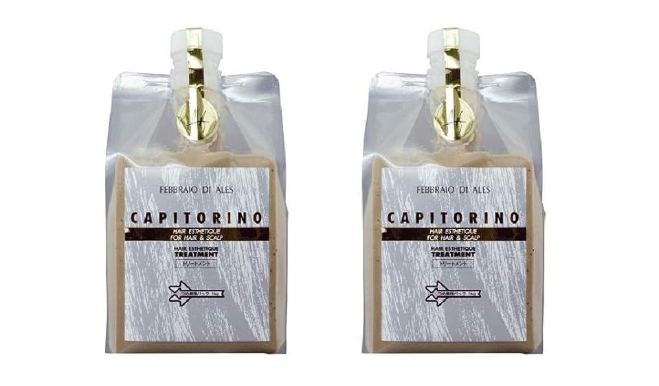 小麦粉スリッパ枯渇【2個セット】カピトリーノ トリートメント 1000g レフィル