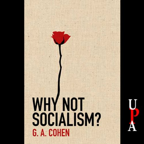 Why Not Socialism? audiobook cover art