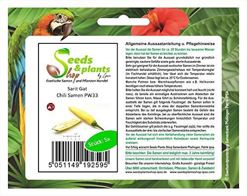 Stk - 5x Sarit Gat- Samen Chili Saatgut Küche Garten Chili samen PW33 - Seeds Plants Shop Samenbank Pfullingen Patrik Ipsa