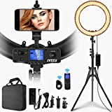 Ring Light with Wireless Remote Controller,IVISII 19 inch LED Ring Light with LCD Display Adjustable Color Temperature 3000K-5800K with Stand, for YouTube Makeup, Video Shooting, Vlog, Selfie
