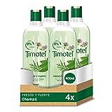 Timotei Shampoo, frisch und stark, Kräuter – 400 ml – [Pack]