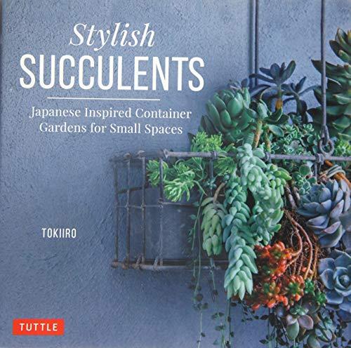 Kondo, Y: Stylish Succulents